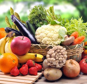 Au Jardin de la Rivière : assortiment de fruits et légumes bio à Lamothe-Montravel