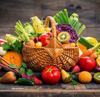 Au Jardin de la Rivière : cuisiner des fruits et légumes bio à Libourne