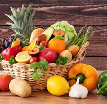 Au Jardin de la Rivière : fruits et légumes locaux à Castillon-la-Bataille